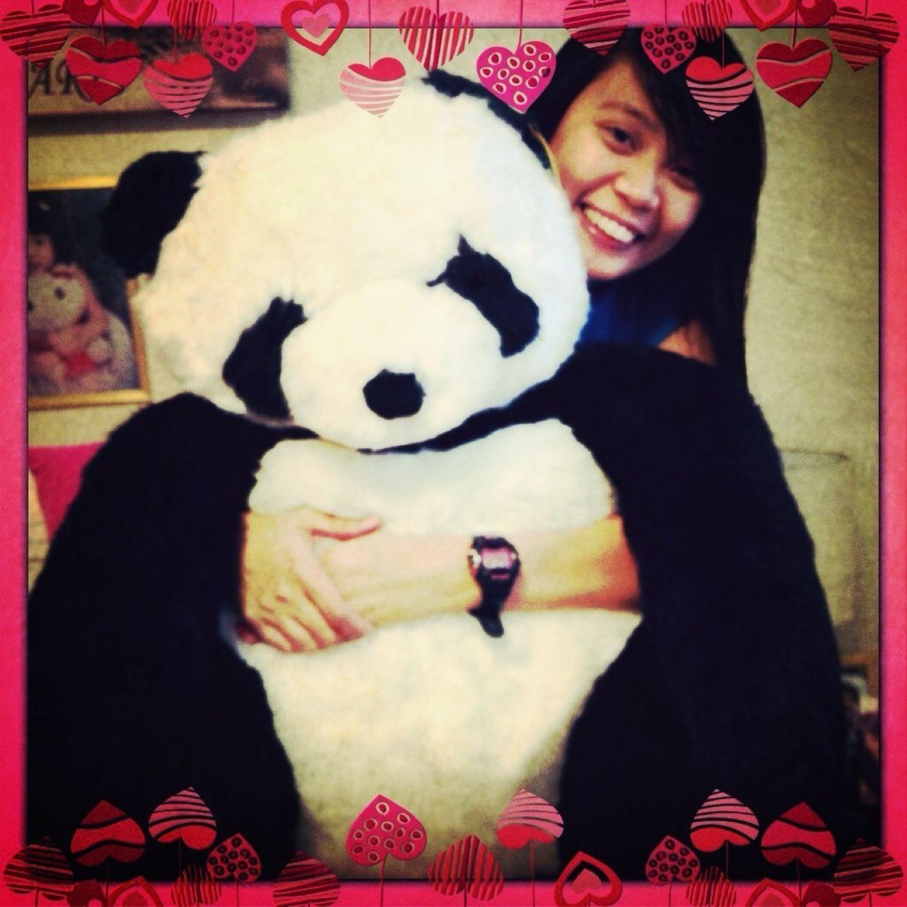 with my giant panda bear