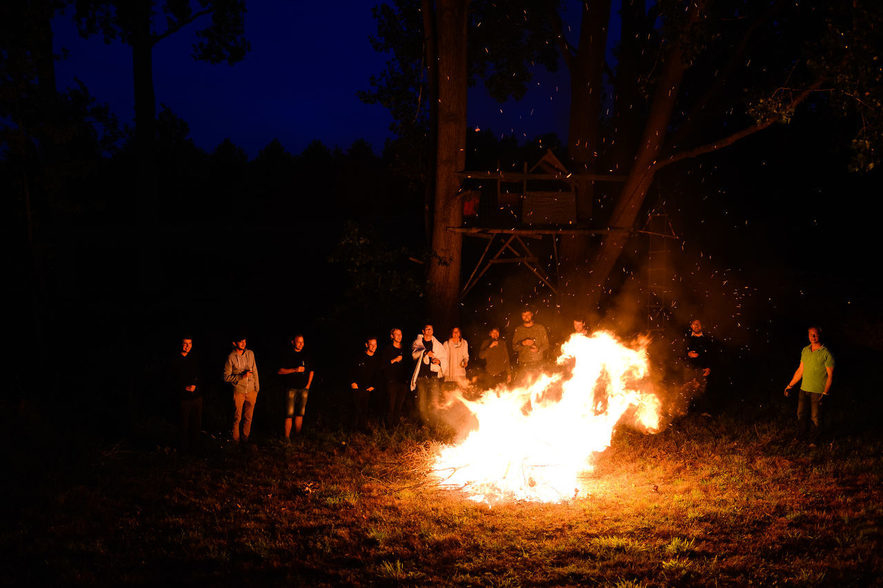 night, burning, real people, men, flame, outdoors, large group of people, tree, bonfire, leisure activity, field, women, nature, togetherness, sky, people, adult