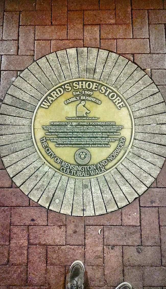 Ward's Shoe Store Est. 1909 Circles Round Round Shape Circular Signstalkers Signs Plaques Sidewalk Photography Signs & More Signs SIGN. Sign Circle Shape Circle Shapes Round Shaped Circle Shaped Round Shapes Sidewalk Discoveries Pavement Patterns Sidewalk Ward's Signs_collection Sidewalks Pattern