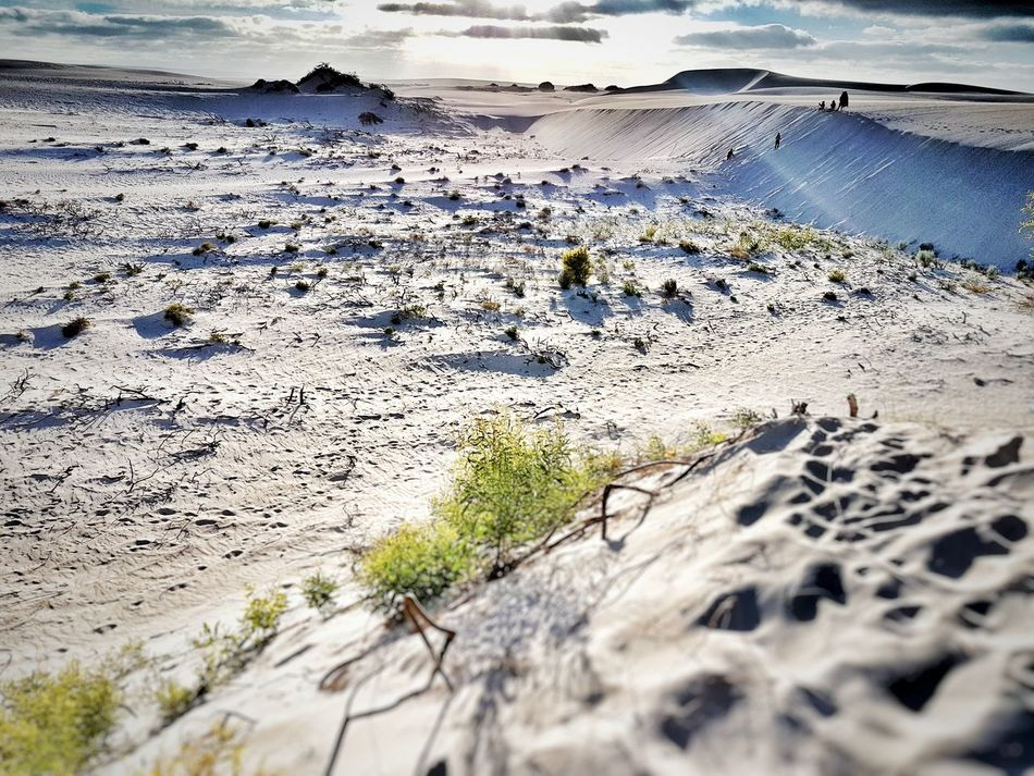 Nature Beauty In Nature Outdoors Water Day Landscape No People Photography Traveling Photography Contrast And Lights Nature Sand Dunes Low Lighting Jurien Bay WA