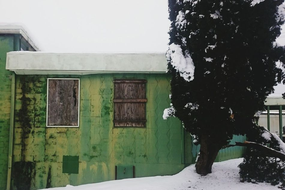 Urban Landscape Window Cold Temperature Snow No People Winter Outdoors Abandoned North Portland Portland Green Boarded Up