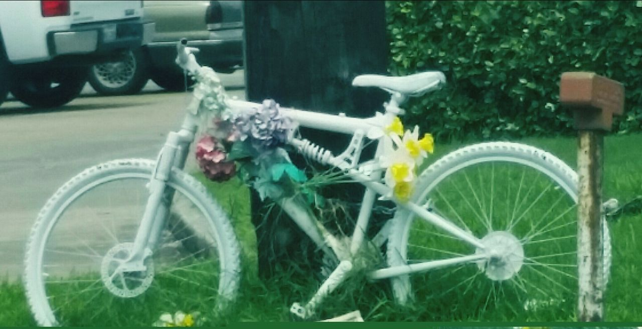 Ghost bike. In memory of someone that has died on a bike or to promote bike safety. CyclingUnites Bicycle Mode Of Transport Land Vehicle Stationary Parked Wheel No People Photography Popular Photos Eyemphotography Eyemphotos Ghost Bike