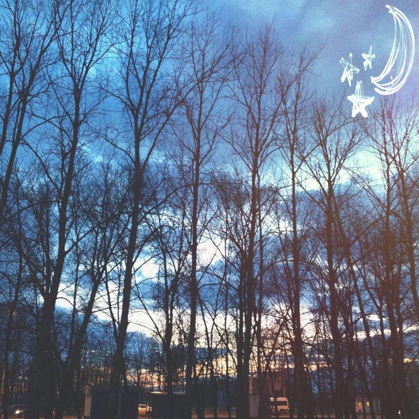Настала пора, теплые вечера и волшебные закаты 🌙 Bestnature Getting In Shape Nature