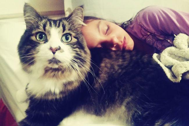 Nap Time Kitty Cuddles Kitty Love Sleeping Beauty SnuggleBuddies