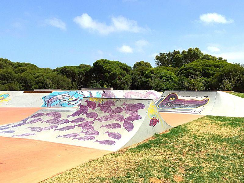 Skate Park Design Expression Western Australia Artistic Expression ArtWork Colorful Skater Art Art Mural Urban Art Skate Park Ramps Skate Life Skateboarding Recreation  Exercise Fun Kids Childhood Memories Skater Zone Skater Ramps Custom Mural Scooter Ramps Scooter Spearwood Adrenaline Rush