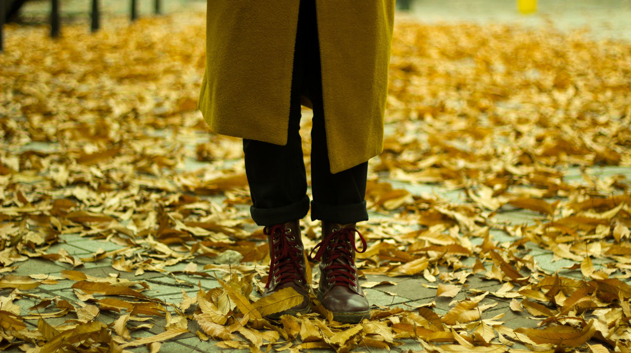 Adult Adults Only Autumn Autumn2016 Close-up Day Evening Ftwotw Girl Gold Gold Colored Human Body Part Human Leg Indoors  Low Section Memories One Person One Woman Only Only Women People Shoes Standing Tree Women Yellow Fresh On Market 2016