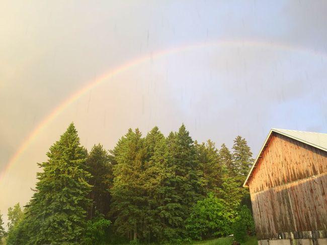 Somewhere Over The Rainbow Counteyside Barn Farm tree Beauty Rain peaceful Sky