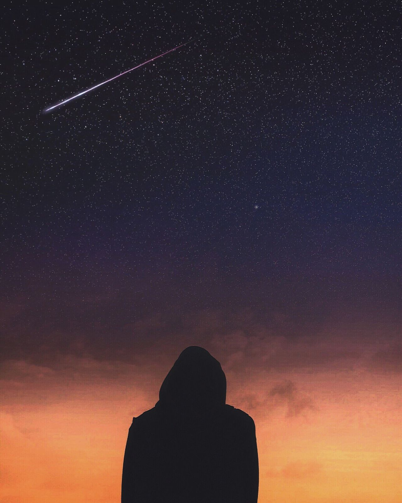 Beautiful stock photos of galaxy, silhouette, sky, star - space, nature