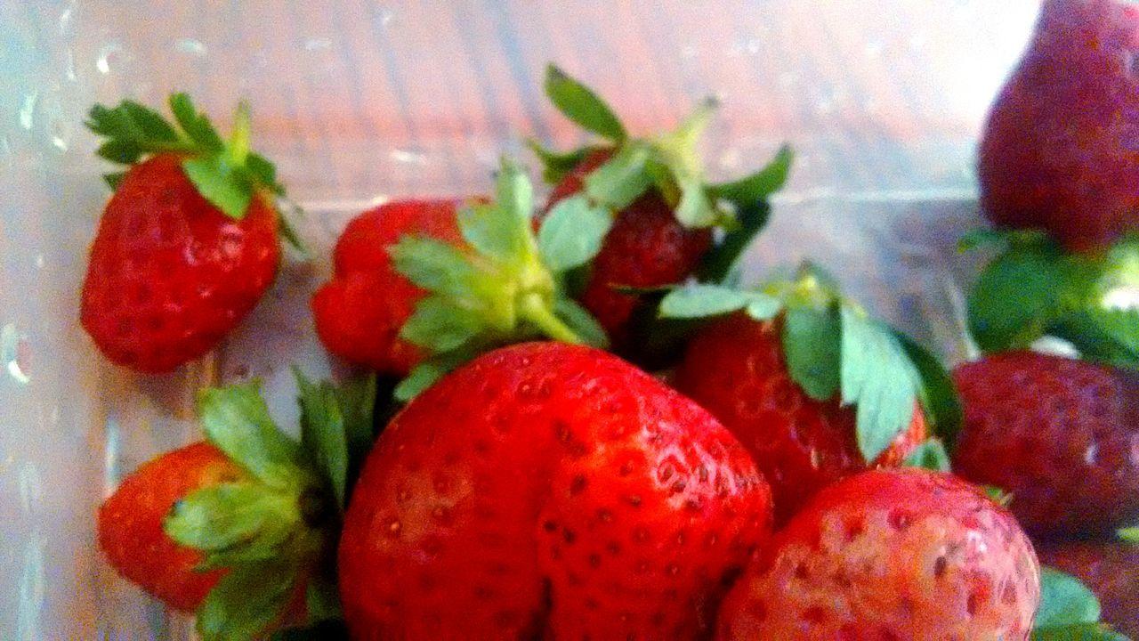 Fresas MiFrutaFavorita Frutas Rojas Retro Nature Comidas