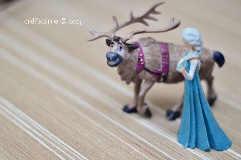 Sven and Elsa from Frozen