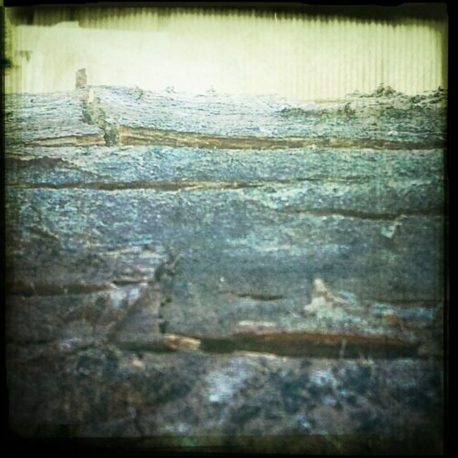 Природа , древесина , старение