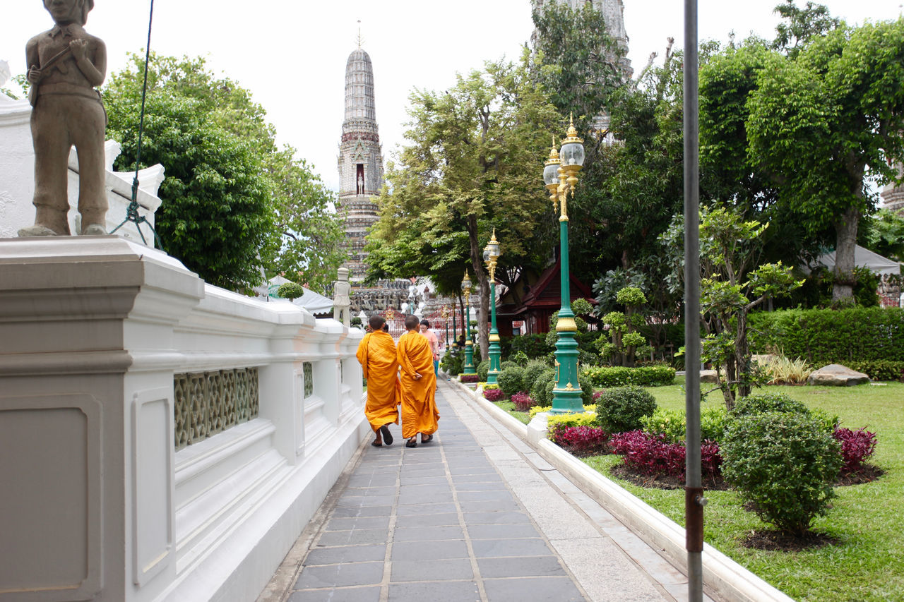 Buddhist monks walking away from camera Backgrounds Belief Buddhism Buddhist Monks Buddhist Temple Culture Green Color Monkhood Monks Plant Temple Thailand Tourism Travel Destinations
