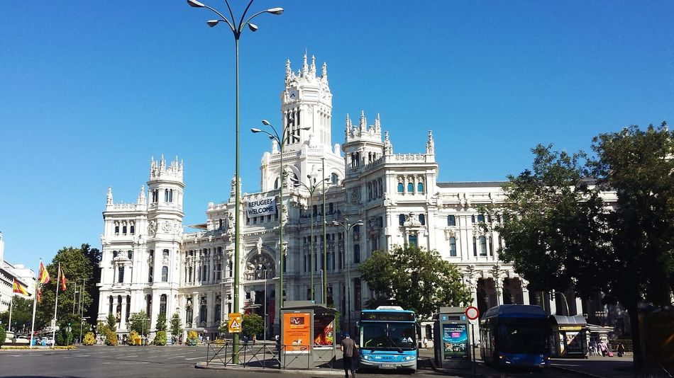 Tree Outdoors No People Architecture Travel Destinations Clear Sky Day Sky Politics And Government City Madrid Cibeles Palace Investing In Quality Of Life Your Ticket To Europe The Graphic City