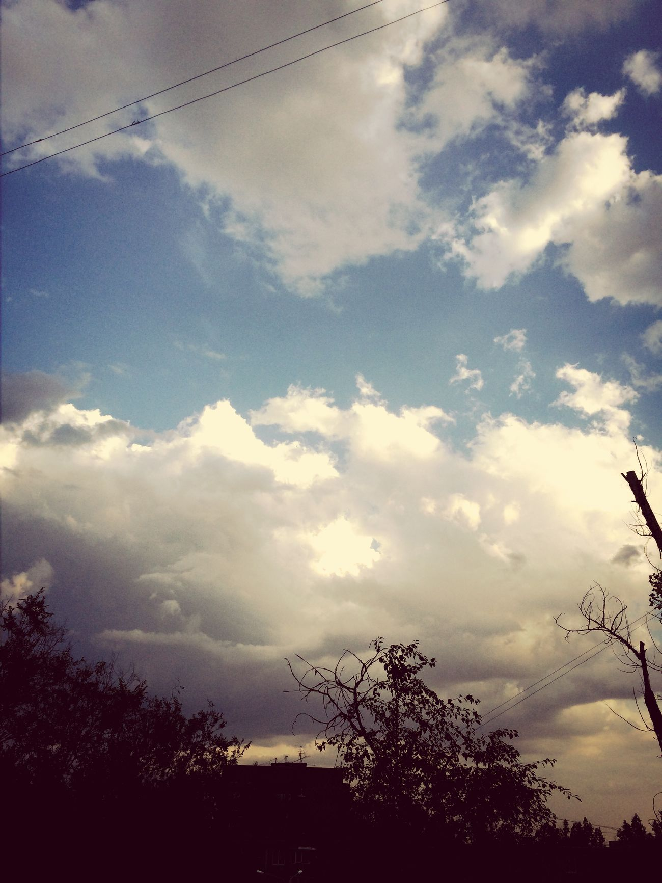 За все время, за все 1,5 месяца нашего жаркого ростовского лета мы не наблюдали тучек, облаков, проносившихся в даль, было одно только ядерное палящее Солнышко ?☀️ Я очень удивилась, посмотрев на небо, и заметила, что сейчас слегка облачно ⛅️ . В принципе, нашим деревьями сейчас 2-х дневный дождик не помешал бы ????. Я уверена более чем половина ростовчан будут ходить под дождем без зонтов ?☔️☔️☔️?☁️ В общем, рады ✌️. Ростовчане , привет ?✌️