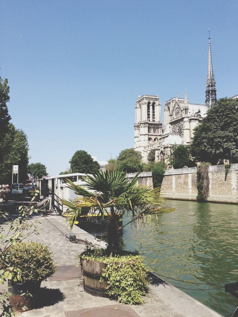 Beautiful stock photos of notre dame, Architecture, Building Exterior, Built Structure, Christianity