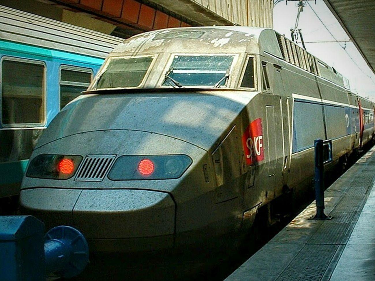 """TGV"". At Marseille Gare de Saint Charles, I think. Charles TGV Train Locomotiva Ferrovie Sncf France Locomotive High Speed Train Treni Train Station"