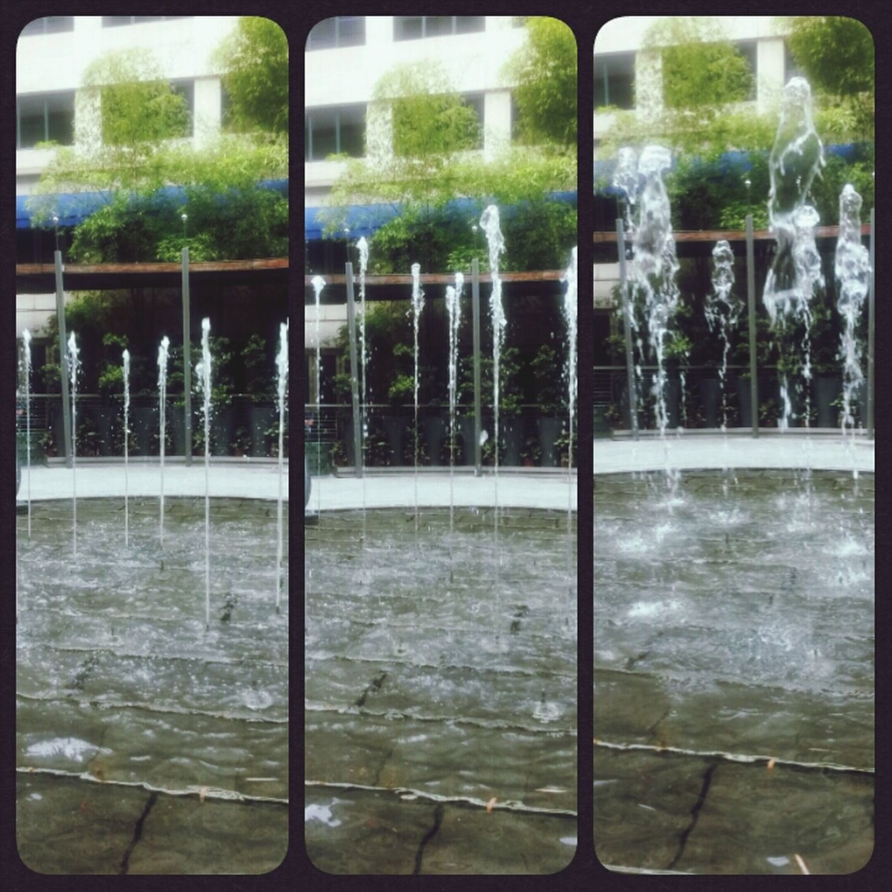 Snap Water Fountain ^_^
