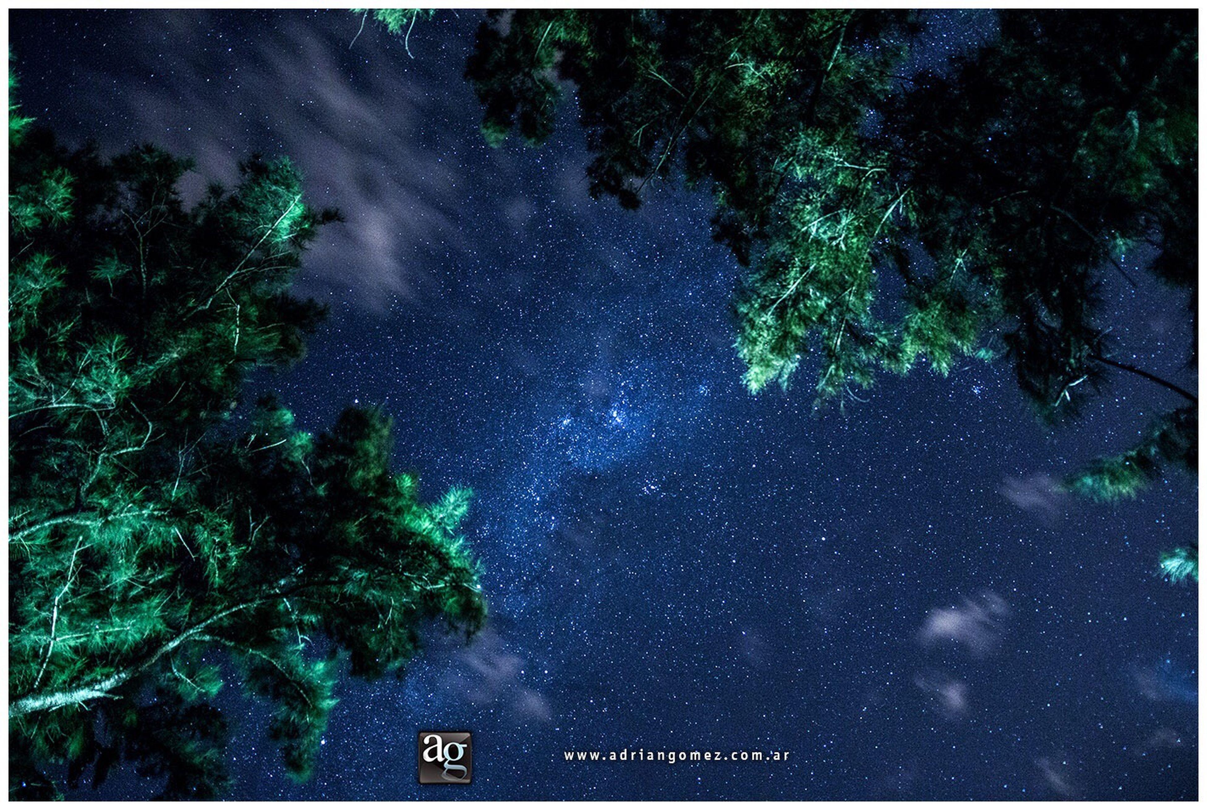www.adriangomez.com.ar #adriangomezfoto #canon #dreams #photography #art #artwork #artist #photoart #luna #moon #stars #lapicada #entrerios #adrian #gomez #artista #fotografo #nature #vialactea #milkywhite #nigthshot #night #nightstars #star #blackandwhite #lapicada #magicsky Milky Way Star - Space Galaxy Tree Astronomy Beauty In Nature Nature No People Space Sky Outdoors Night First Eyeem Photo