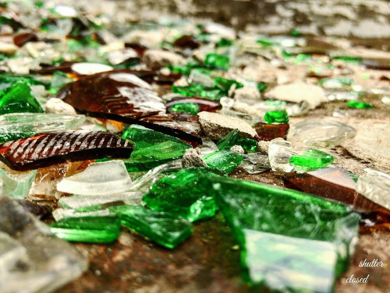 Broken glass is like glitters...... All shattered and shinny Selective Focus Close-up Nature Green Color Fragility Tranquility No People Surface Level First Eyeem Photo Softness Day Broken Glass Broken Glass Shattered Gliter MyClick MyPhotography Mobilephotography Modern Illusion Focus Object Maximum Closeness Looking Sunset Sun