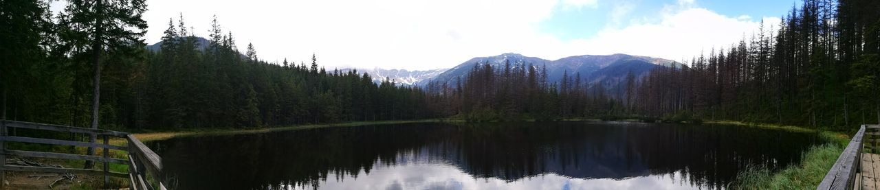 Panorama 😅 Pond Beauty In Nature Nature Forest Sky Tree Mountain Landscape Panoramic Symmetry No People Day Outdoors Panoramic Views Eyem Best Shots Nature Smartphone Photography Panorama Pine Tree Tranquility Reflection Travel Destinations Practicing Pinaceae Scenics