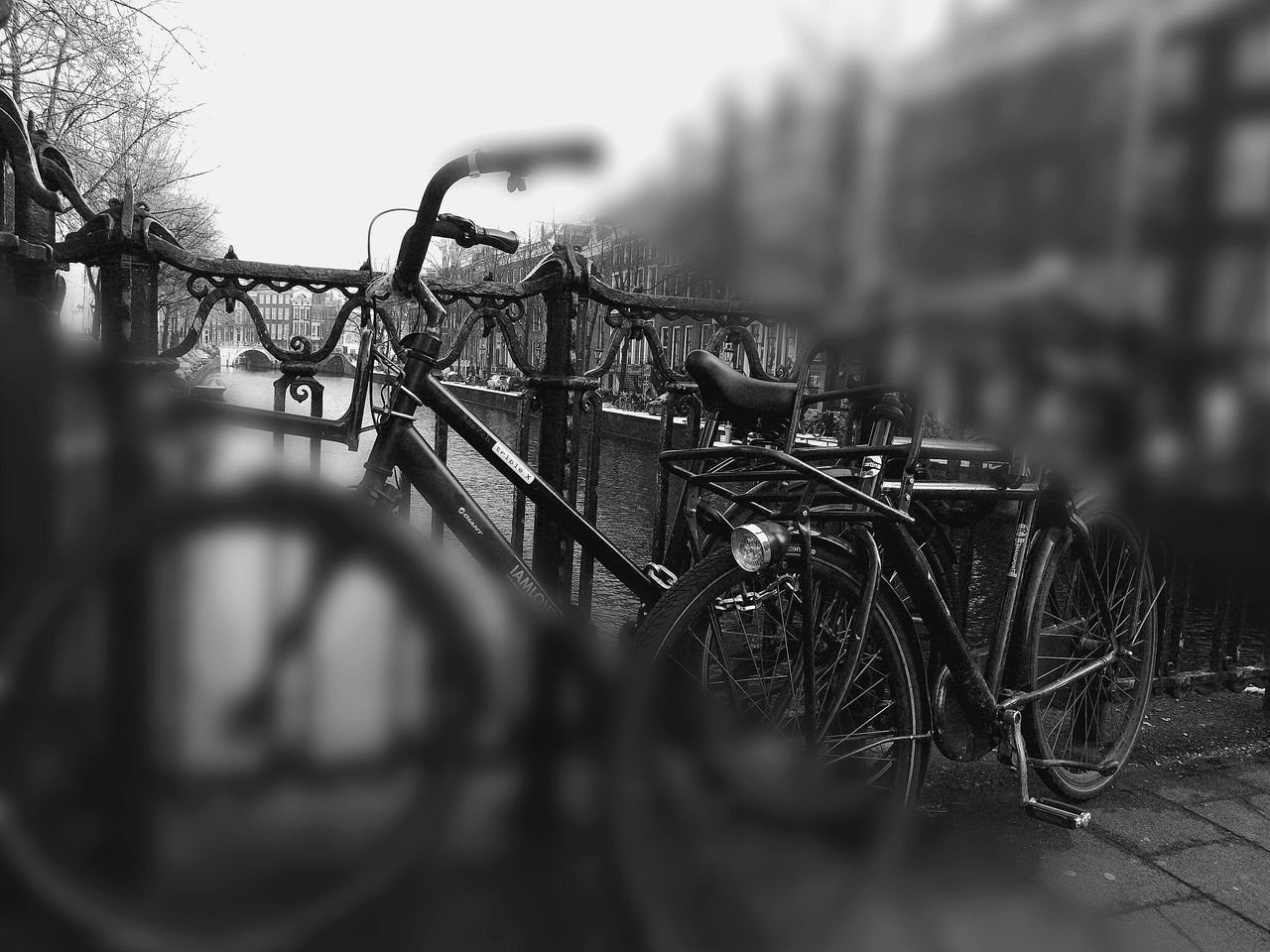 bicycle, transportation, mode of transport, stationary, land vehicle, selective focus, no people, bicycle rack, outdoors, day, wheel, spoke, close-up