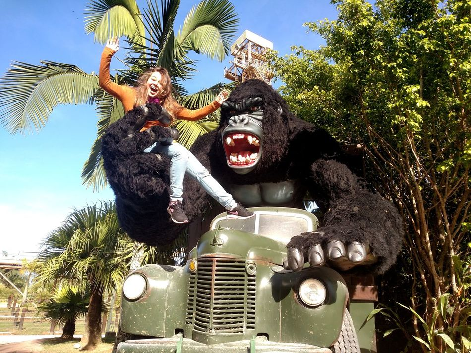 Girl King Kong Amusement Park Fun