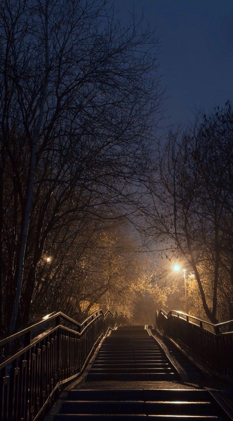 Мост через Карлутку. мост