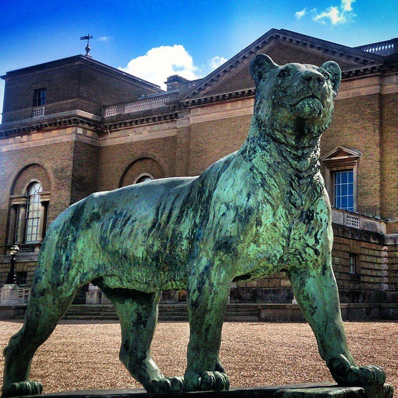 Holkham Holkhamhall Lion Statues statueporn statue lion archilovers architecture architectureporn architexture architecturelovers archidaily cloudporn skyporn art building_shotz buildings buildingstylesgf