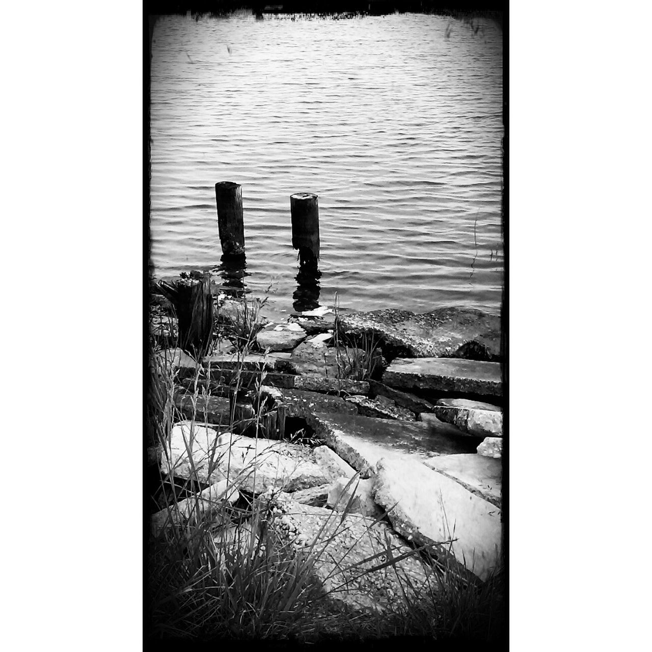 water, lake, day, nature, no people, outdoors, animal themes