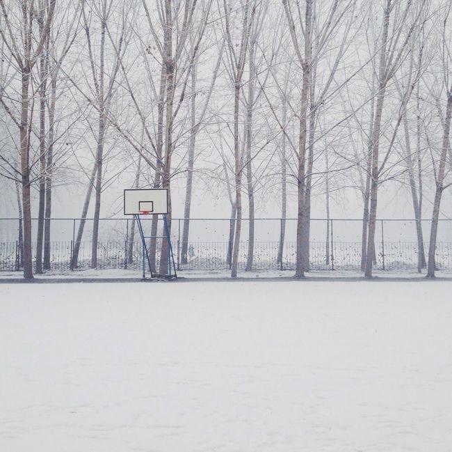 冬天 雪 冬天 雪