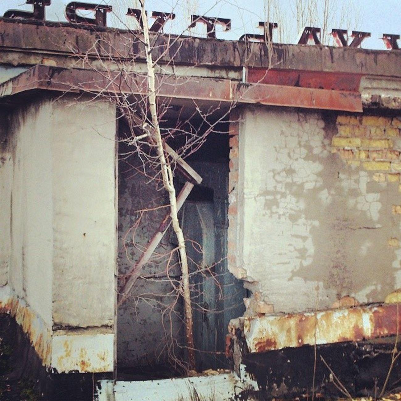В любой непонятной ситуации прорастай припять дк_энергетик Pripyat Chernobyl чернобыль