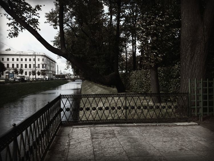 image by @nicoleulyanova canal City Day No People River Saint Petersburg Tree Walkway