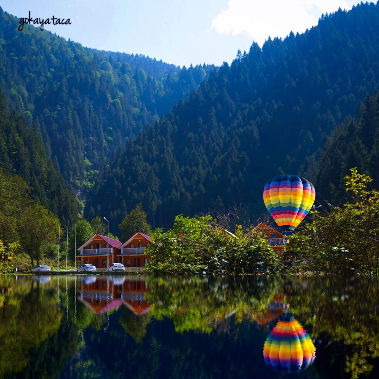 Reflection in blacksea Karadeniz Reflection Reflection_collection TreePorn Tree_collection  Enjoying Life Landscape_Collection Landscape