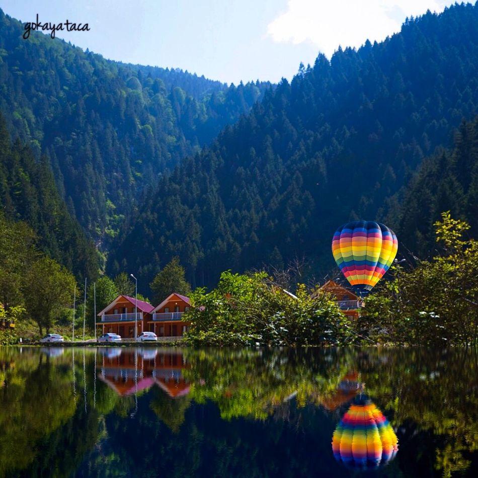 Reflection in blacksea Karadeniz Reflection Reflection_collection TreePorn Tree_collection  Enjoying Life Landscape_Collection Landscape
