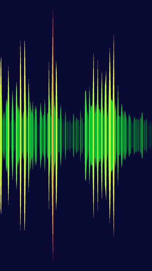 Voice of music Audio Equipment