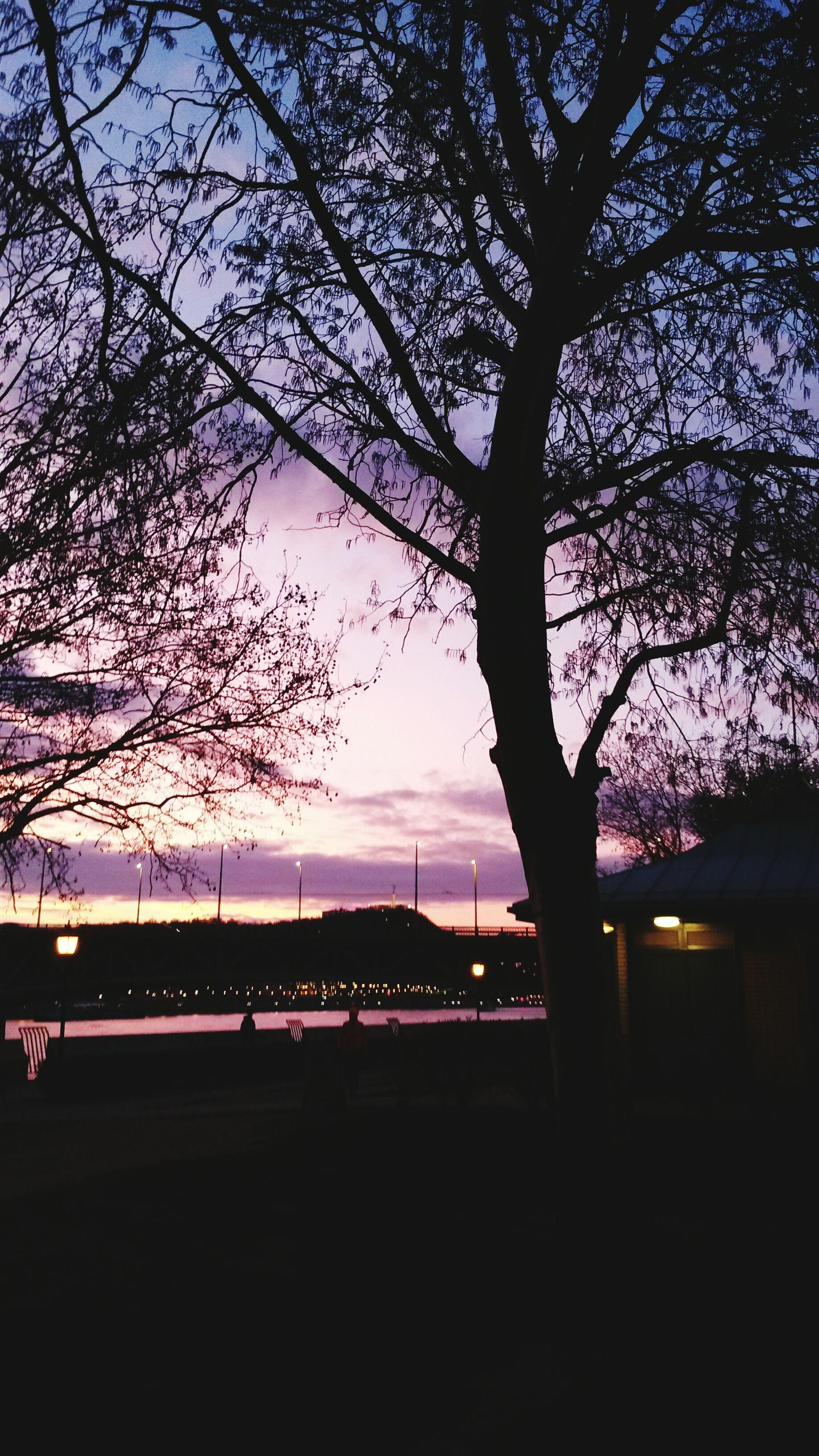 Sundown Gradiented Sky Duna Tree Sky City Beautifulbudapest Nature