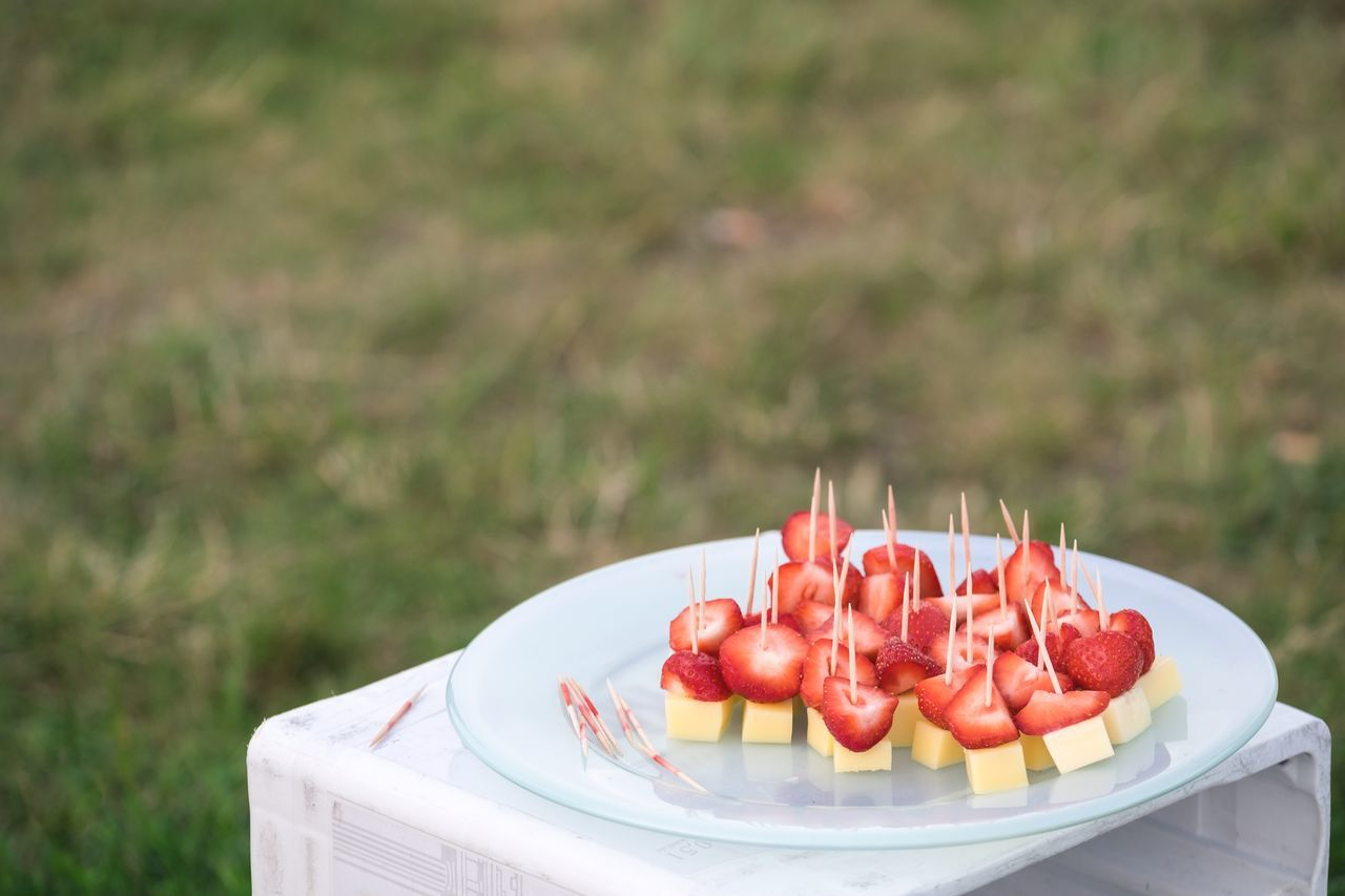 Cheese Copy Space Food Food And Drink Freshness Friends Fruit German Culture Grass Leisure Activity Lifestyles Outdoors Park Park - Man Made Space Party - Social Event Plate Public Park Ready-to-eat Skewer Snack Strawberry Summertime Table Tempelhof Tempelhofer Feld