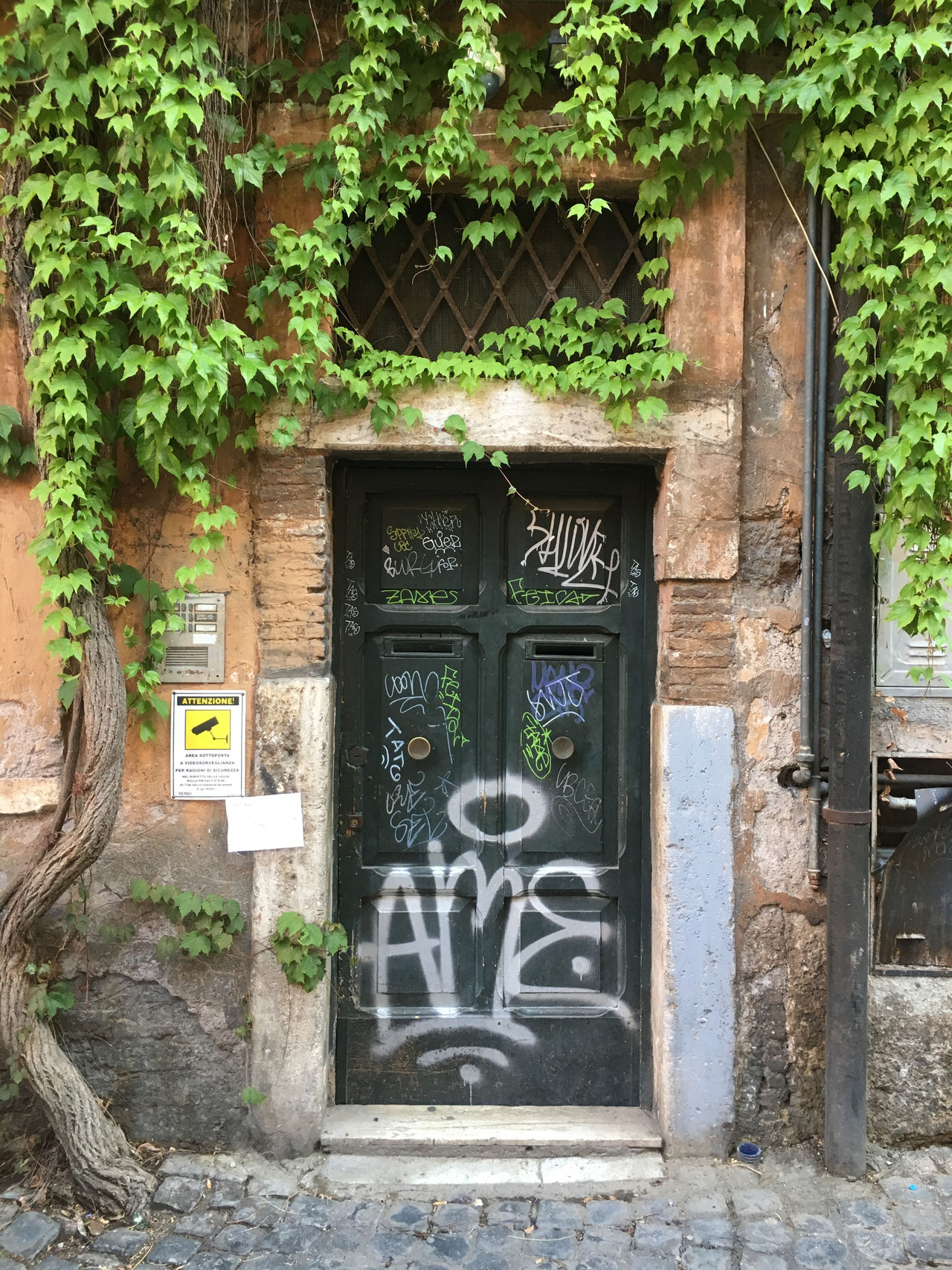 Someone lives here! Architecture Building Exterior Built Structure Day Door Entry Graffiti Growth Nature No People Outdoors Plant Trastevere Tree