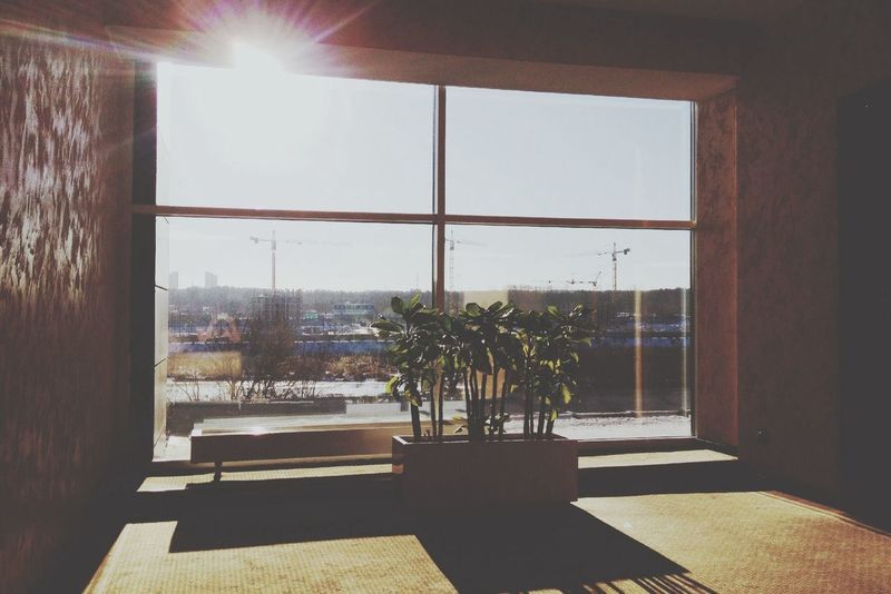 Morning Sun Hotel Windows l