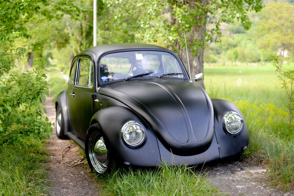 Black Cars Old Car Vintage Cars Vintage Green Green Green!  Racer Crome  Old Time Wolksvagen Maggiolino Beetle Street Race My Point Of View Sun Nature_collection Threes