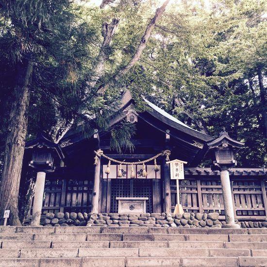 Shrine IPhoneography Japan 諏訪大社 上社 前宮