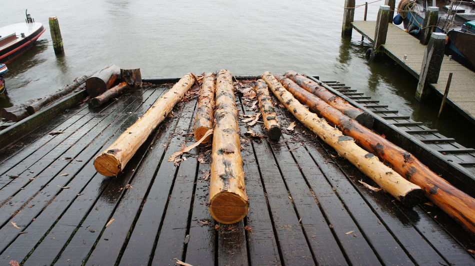 Water Wood - Material Plank Wooden Wooden Raft Day Outdoors No People Nature Dirty Messy Weathered Wood Paneling Sky Leaves🌿 Canal Trees