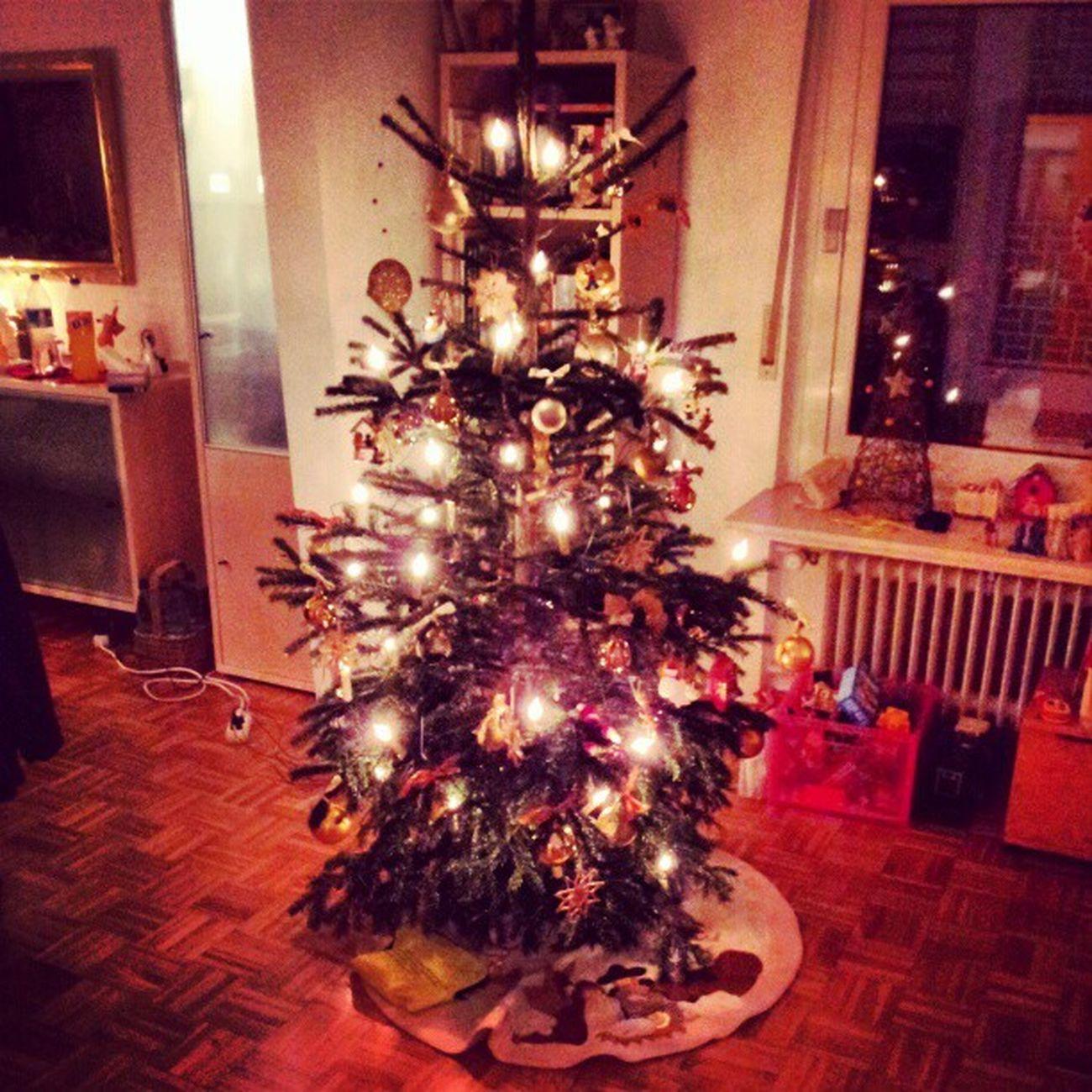 #chrismas #tree #igers #instagramm #igfamos #instagood Tree Chrismas Igers Instagramm Instagood Igfamos