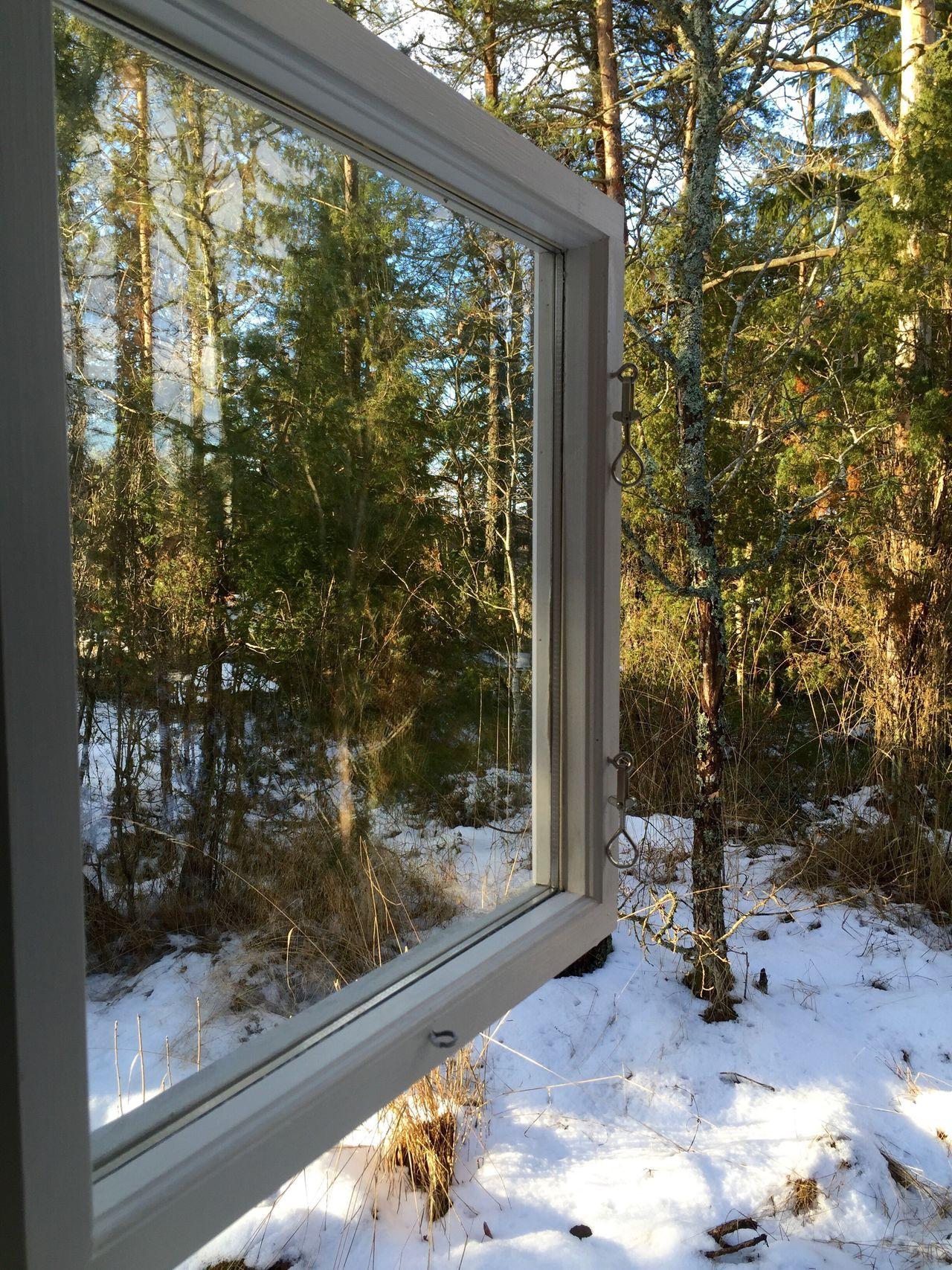 My Window view Window View Forest My Surroundings Peacefull Peaceful And Quiet Relaxing Taking Photos Enjoying Life Snow Relaxing Winter In The Forest