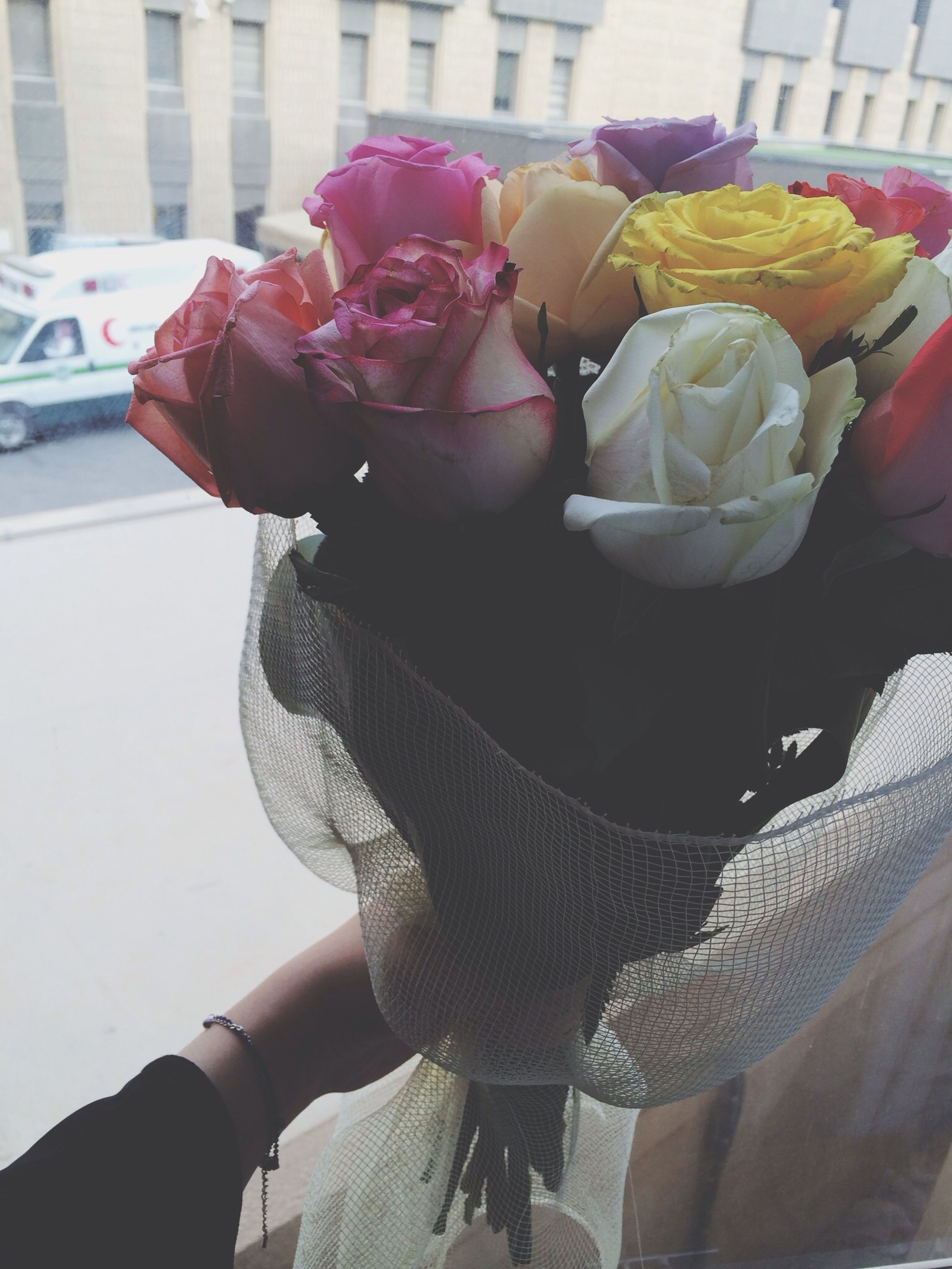 flower, freshness, holding, lifestyles, indoors, rose - flower, petal, bouquet, person, vase, leisure activity, high angle view, casual clothing, fragility, close-up, day, flower head, sitting
