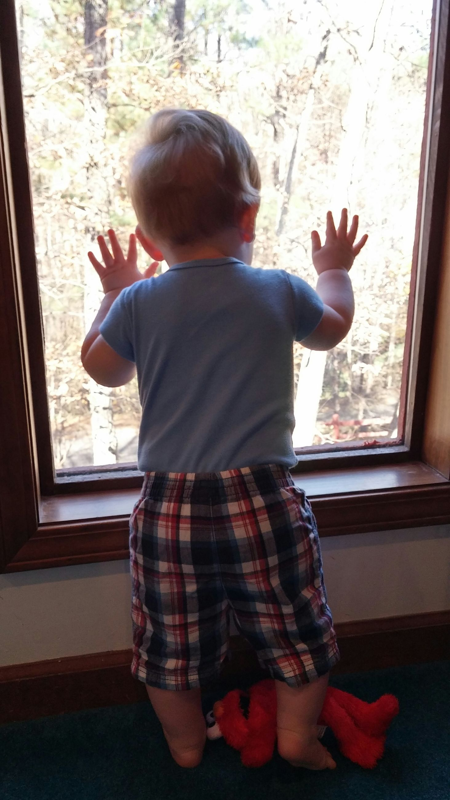 indoors, childhood, lifestyles, casual clothing, leisure activity, home interior, rear view, sitting, full length, standing, boys, elementary age, three quarter length, relaxation, day, window, innocence, sunlight