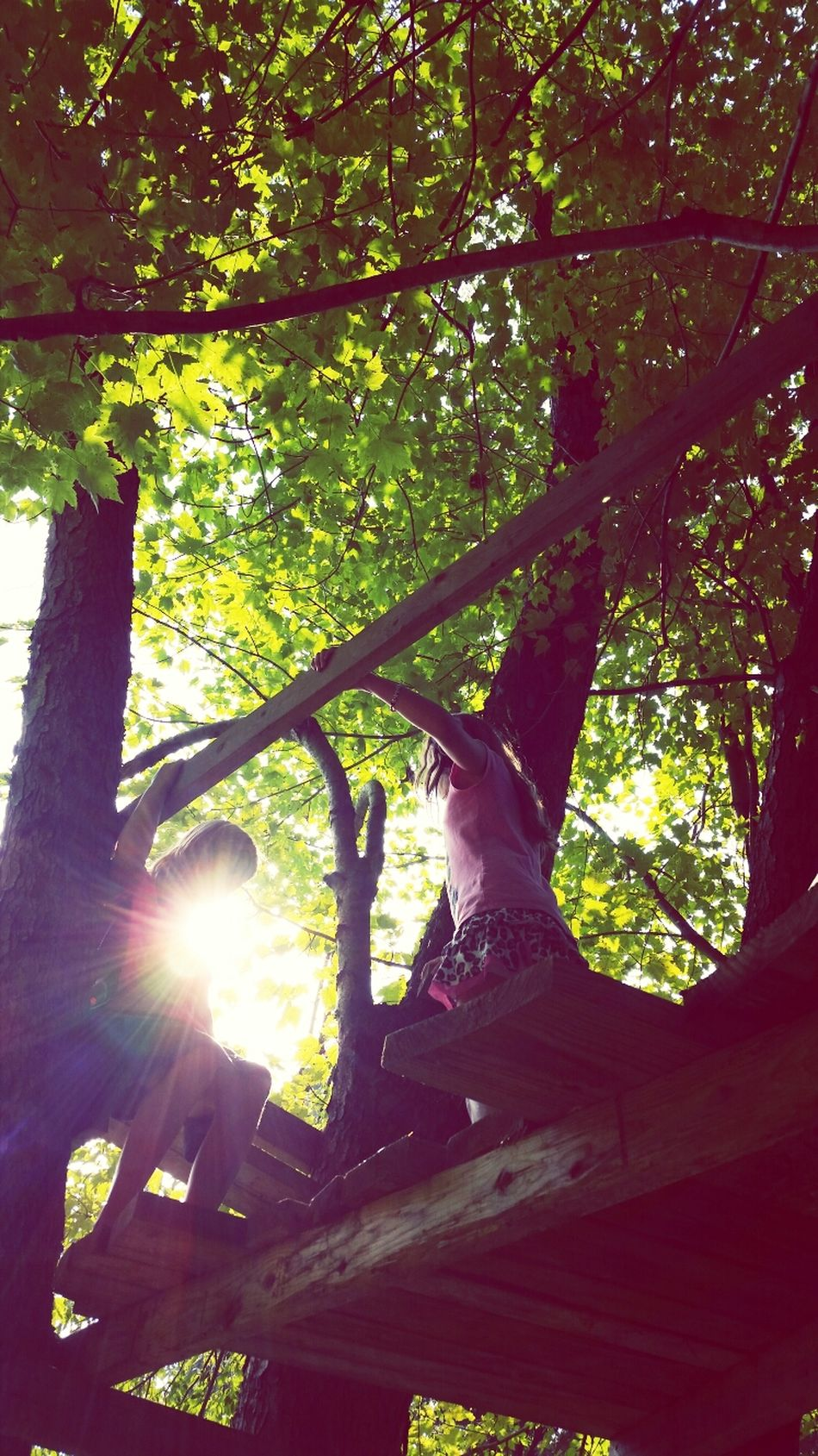 Girls in the tree house Enjoying Life Silhouette Dramatic Sky Beauty In Nature Kid Photography What I Value