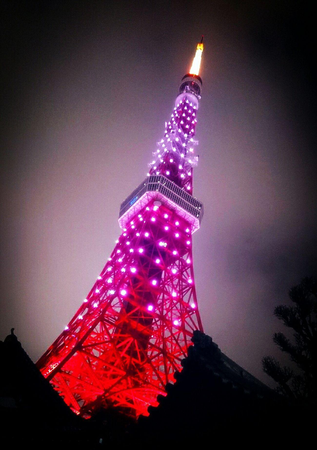 サクラ咲く 東京タワー 応援 今日はサクラ色のタワー?