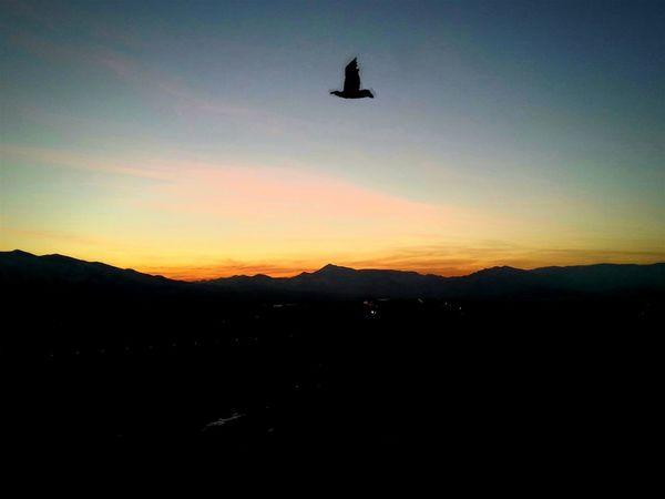 Günbatımı 🌅 Gün Batarken🌄