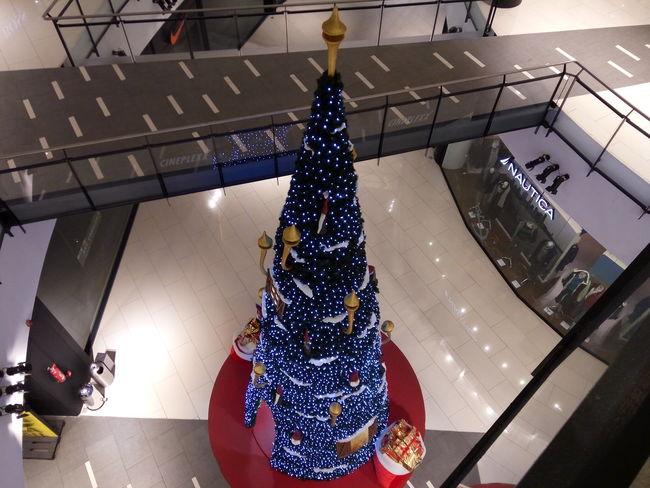 Christmas tree Christmas Tree Christmas Time